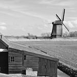 Netherlands in Spring