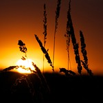 Sunsets  in Leduc 17SEP2013
