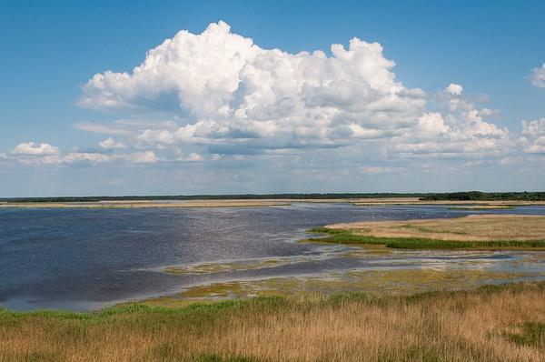 Eesti 2013 by Muzzyenn