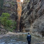 2015Oct Zion National Park, The Narrows