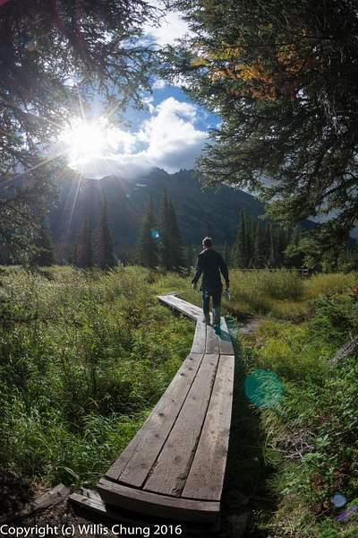 Hiker heading towards the Cataract Creek bridge, Many Glaciers region, Glacier Natl Park, Montana