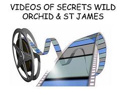 Secrets Video Tour