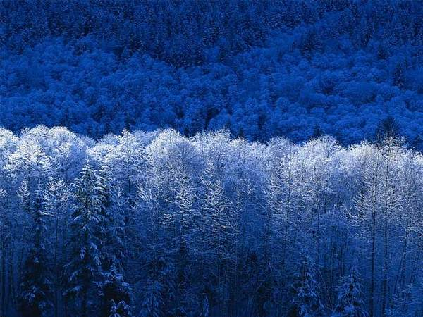 Winter 222