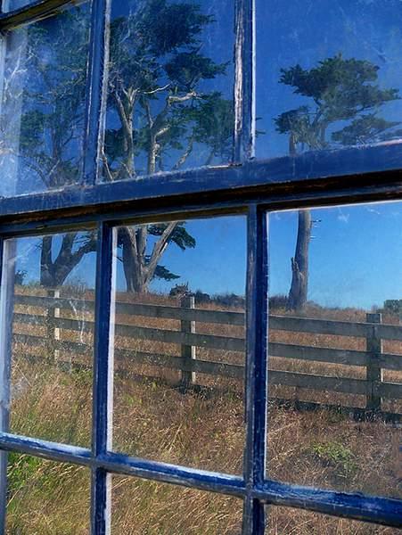 Windows at Pierce Point Ranch 222