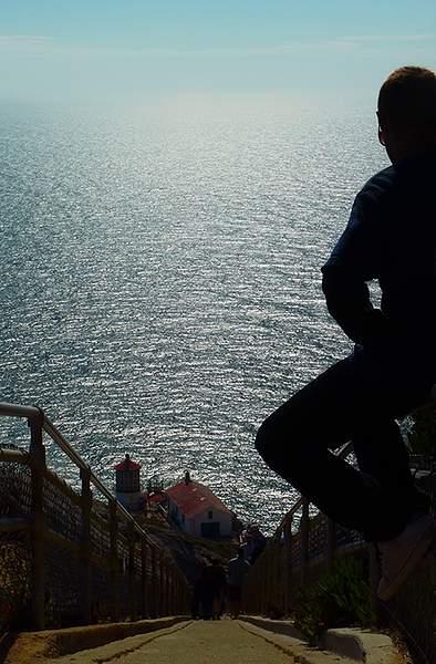 Point Reyes Lighthouse Steps 222