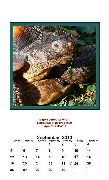 2010 September 222
