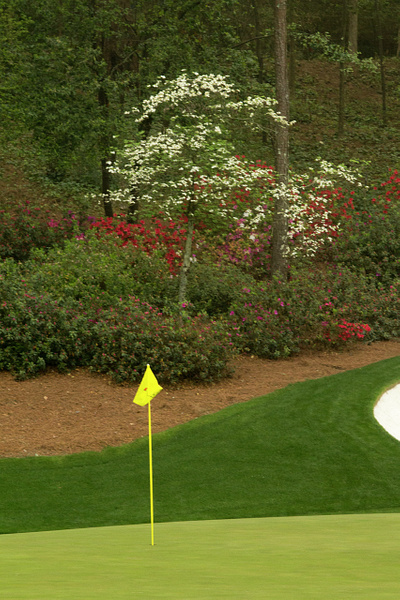 Masters 2014 by GreggJacobs