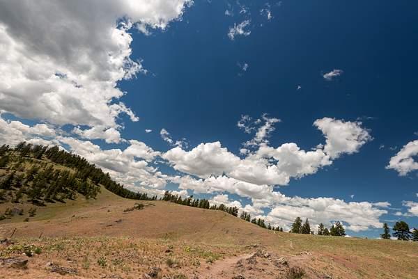 Bison Range2