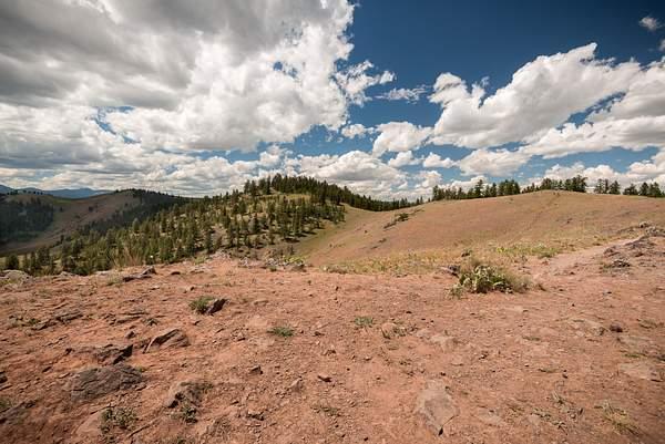 Bison Range3