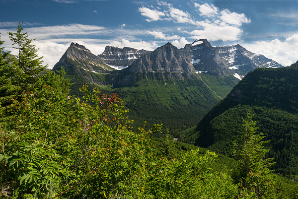 Montana by 1927steinway