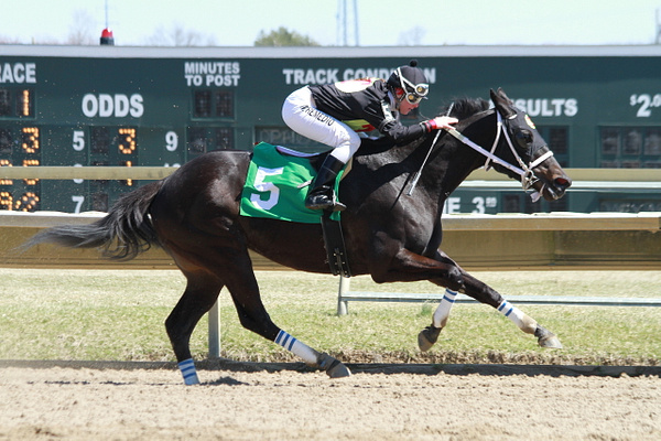 Parx 04/06/14 Win Pics by Maria Remedio