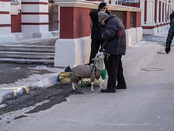 2013_March_20130310_141 by PetrSib