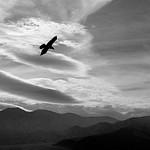 Death Valley Haikus - Winter, 2007