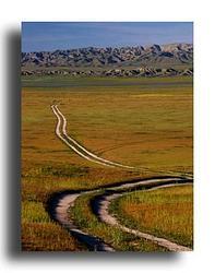 The Carrizo Plain - California