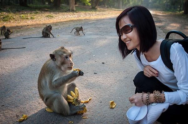 2014_12_Это про обезьянок by Anatoly Strunin