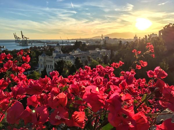 Malaga, Spain by Eugene Osminkin