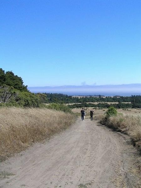 Wilder Horse Trail by ForwardEver