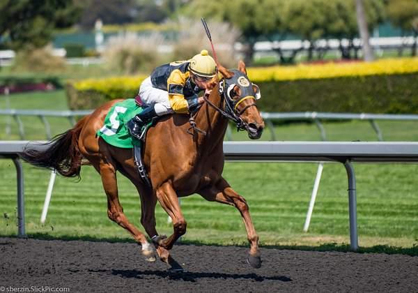 Horse Racing 9
