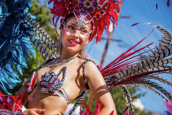 SF Carnaval 222