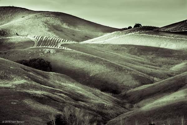 Green Hills 222