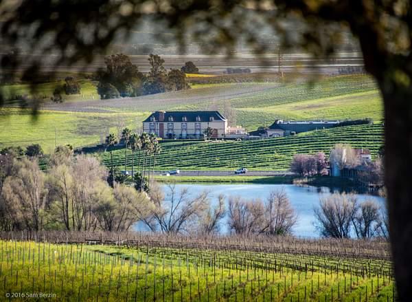 Carneros Winery 222