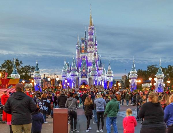 178-Disney 2017-IMG_5252 by PeterPlusMaria