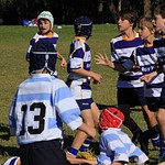 Lane Cove Rugby 18 May 2013