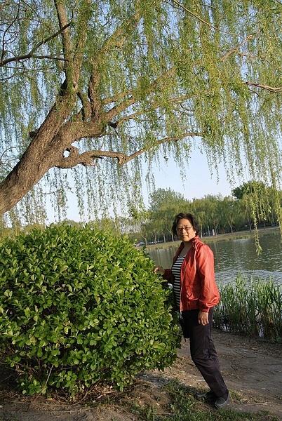 iPhone photo SP_4252924 by Zhaopian