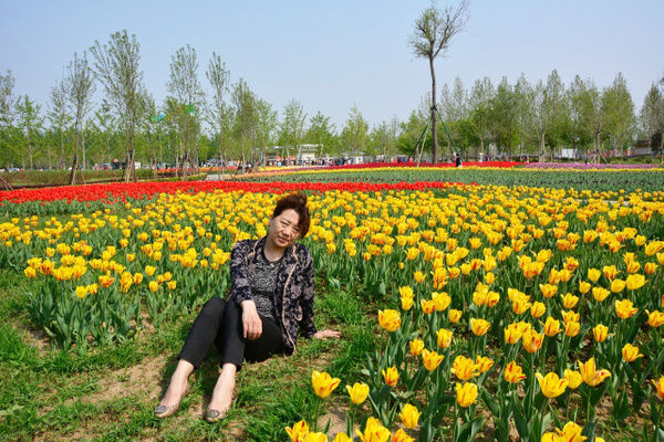 DSC_1335 by Zhaopian