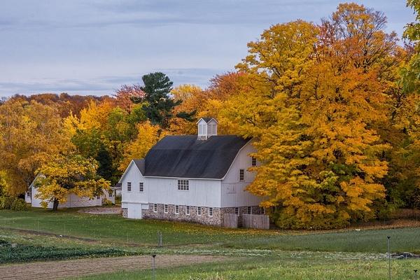 2016 Northern Michigan Fall Colors from Lake Gitchegumee and Grand Traverse Light by SDNowakowski