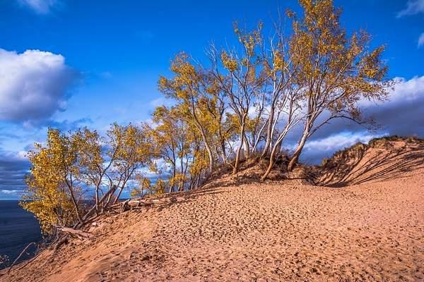 Fall Colors @ Sleeping Bear Sand Dunes