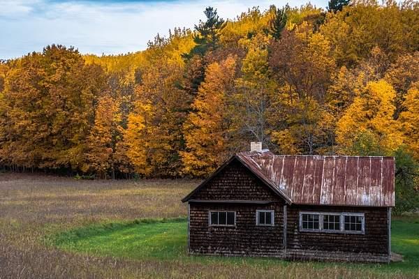 Fall Colors on the Farm