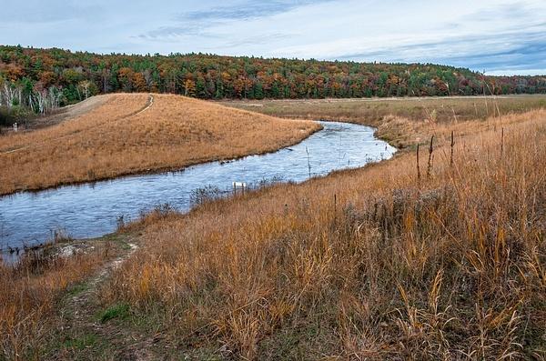 2017 Brown Bridge Quite Area Fall Colors on the Boardman River by SDNowakowski