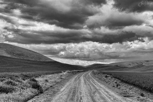 The Road Runs Through It B and W