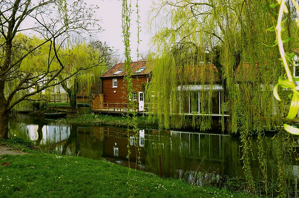 Willows over the water. by DavidNunnerley