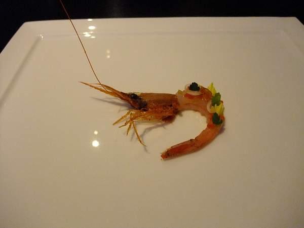 Shrimp - gumbo flavors 222