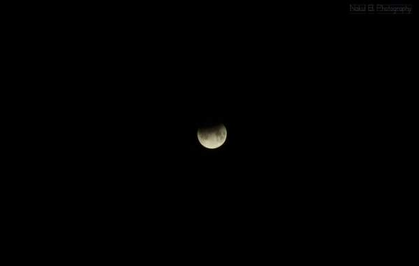 Lunar Eclipse 2