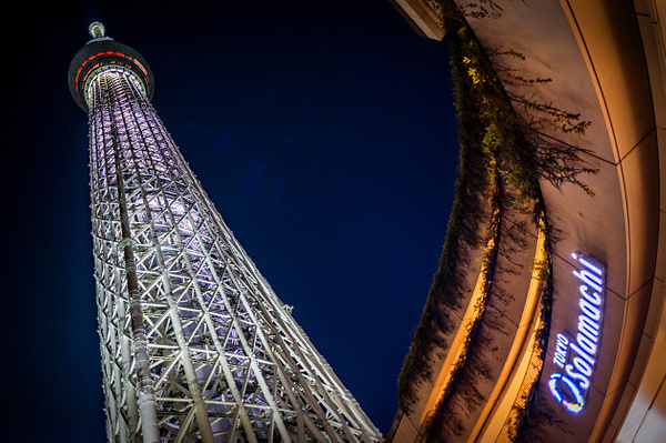 Tokyo_Trip_2017_161 by alienscream