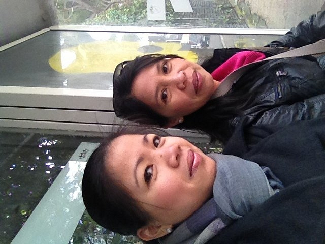iPhone photo SP_4709962