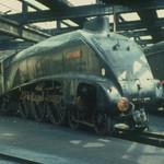 York 1968