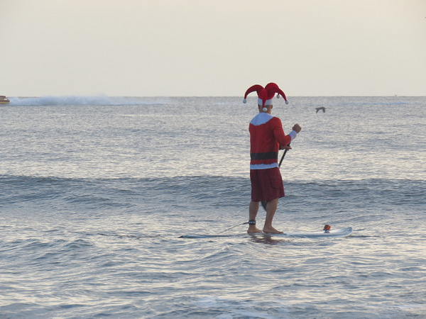 Surfing Santas 2017 Cocoa Beach by CherylsShots by CherylsShots