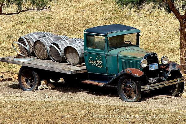 Old Truck in a Vineyard 222