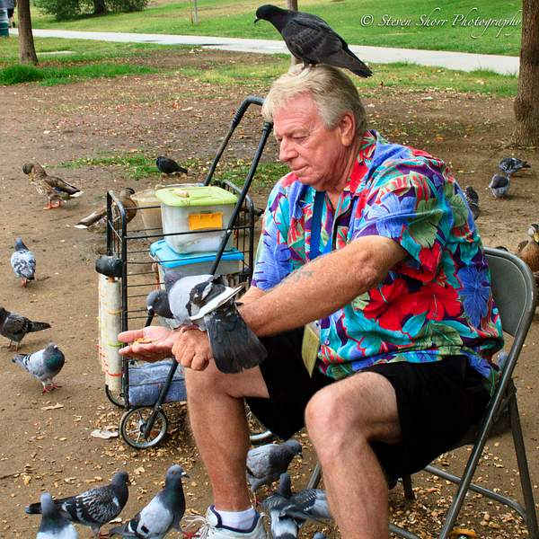 Bird Man 222