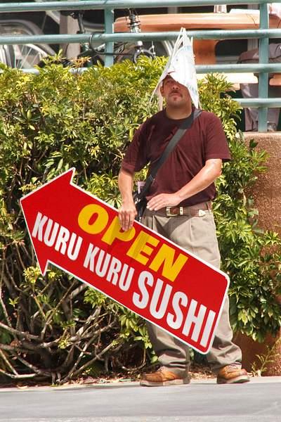 Will Work 4 Sushi 222