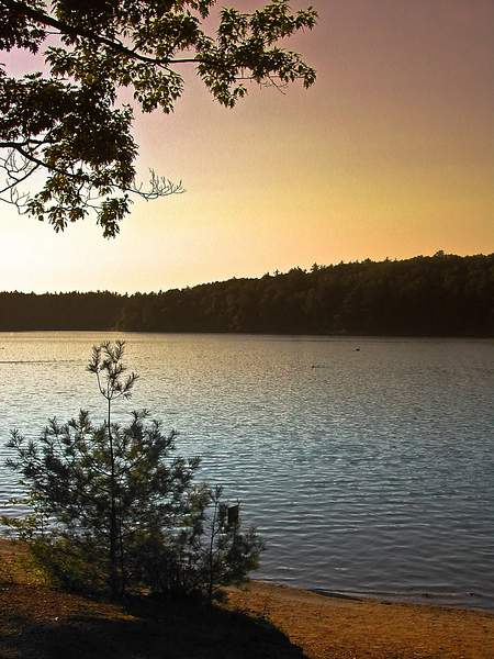 Walden Pond 222
