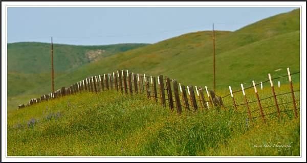 CA Hwy 46-Fence 222