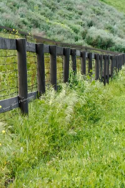 Fence in Ballard Canyon 222