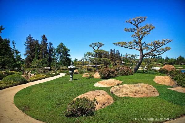 Japanese Gardens 1 222