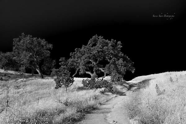 Las Virgenes Canyon Open Space Preserve 2 222