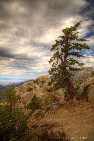 Tahquitz Peak Hike 8 222